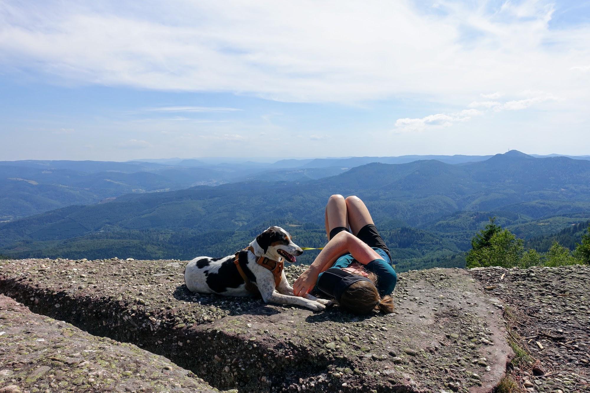 Vogezen_reizen met je hond_5
