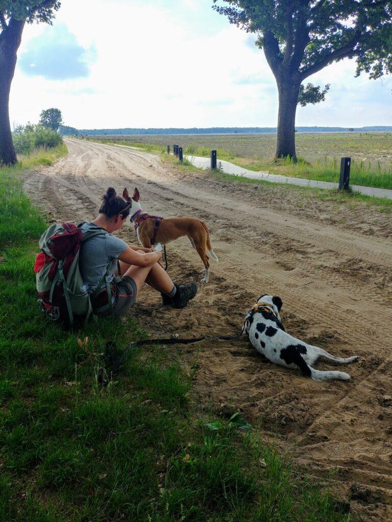In de schaduw_Reizen met je hond