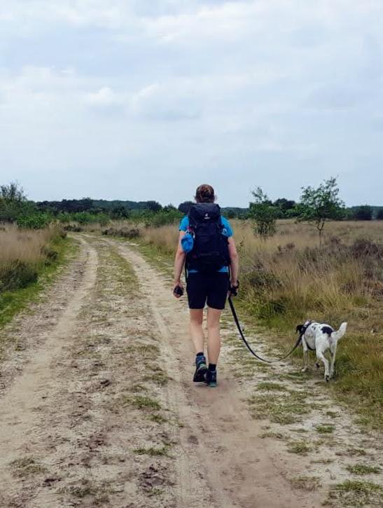 Wandelen in de hitte_Reizen met je hond