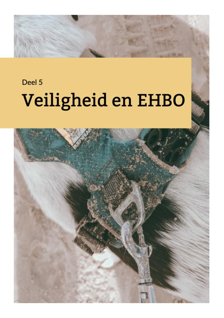 Handboek Backpacken met je hond deel 5 Veiligheid en EHBO