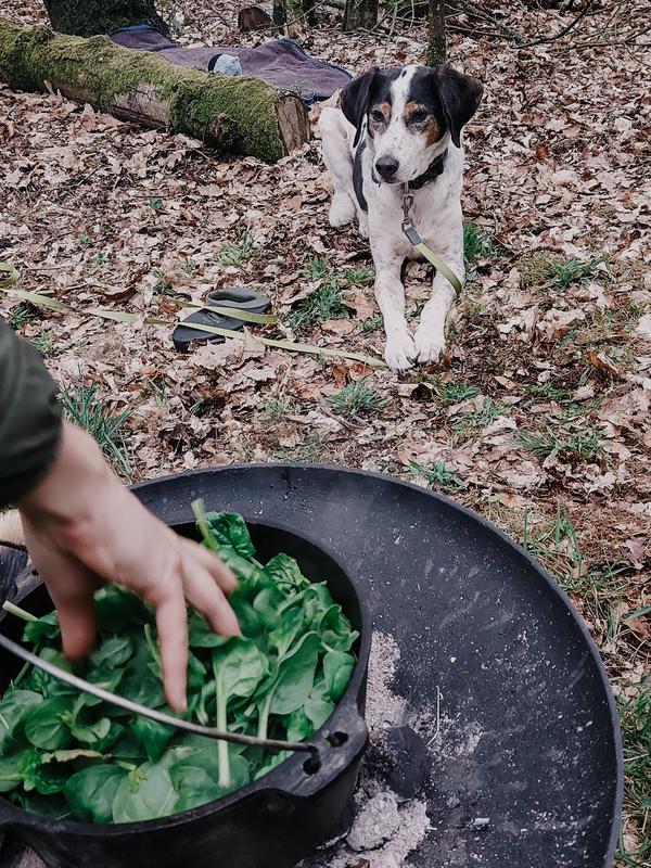 Koken op kampvuur_Reizen met je hond